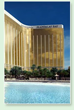 art - mandalay bay casino and resort - las vegas